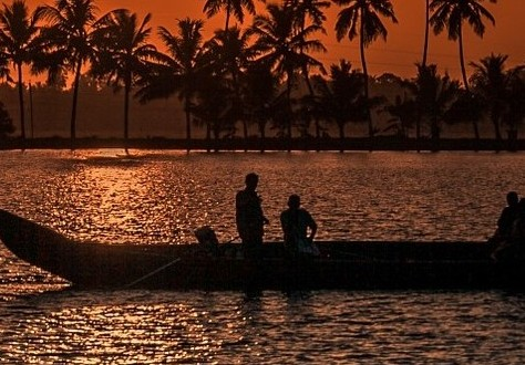 Amazing Things to Do In Kerala