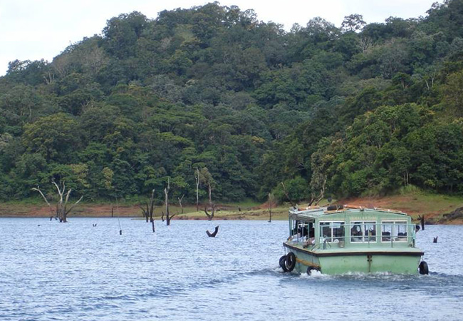 7 Nights 8 Days Cochin Munnar Thekkady Alleppey Houseboat Kovalam Kerala Honeymoon Tour Package