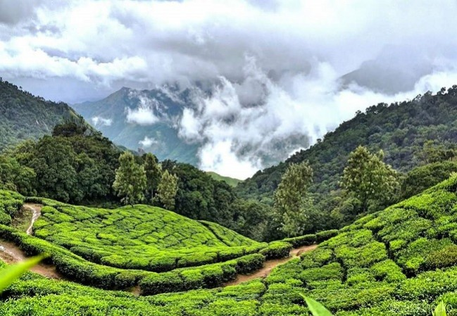 3 Nights 4 Days Munnar Thekkady Kerala Tour Packages