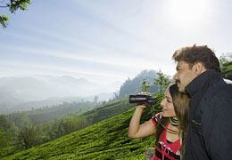 2-nights-3-days-munnar-thekkady-kerala-tour-package