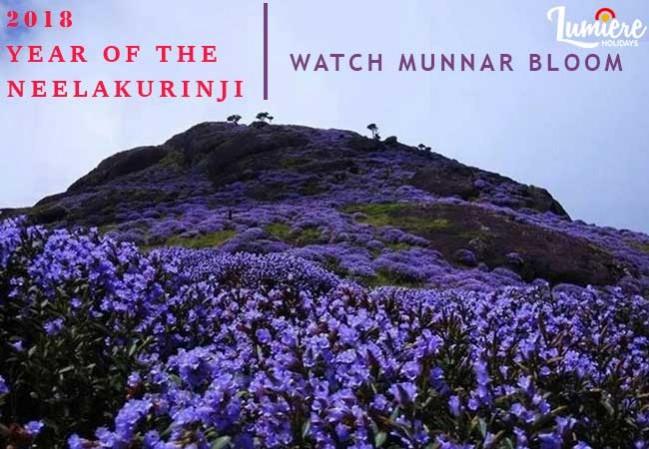 2 Nights 3 Days Munnar neelakurinji 2018 Tour package for Elders