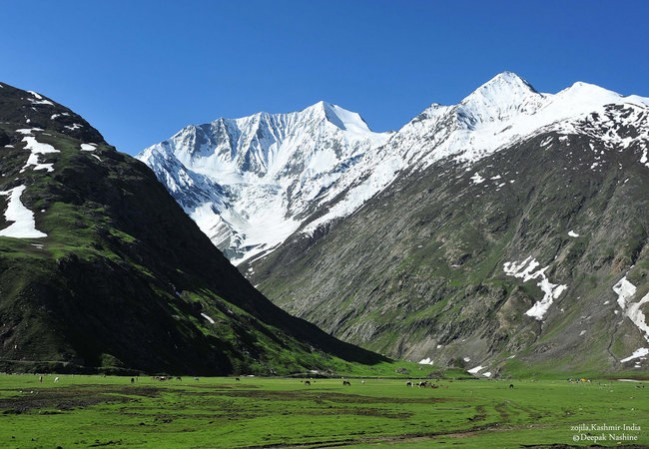 5 Days Kashmir Tour Package