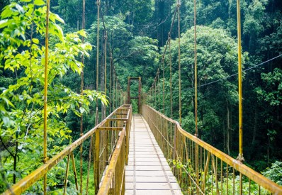bangalore-coorg-wayanad-packages