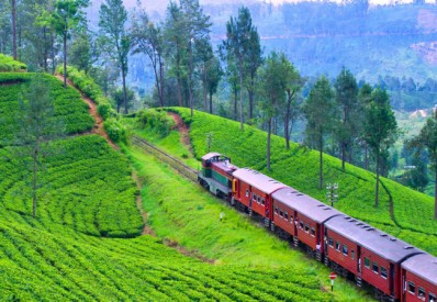 srilanka-tour-package-from-kerala