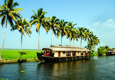3-nights-4-days-munnar-alleppey-houseboat-tour-package